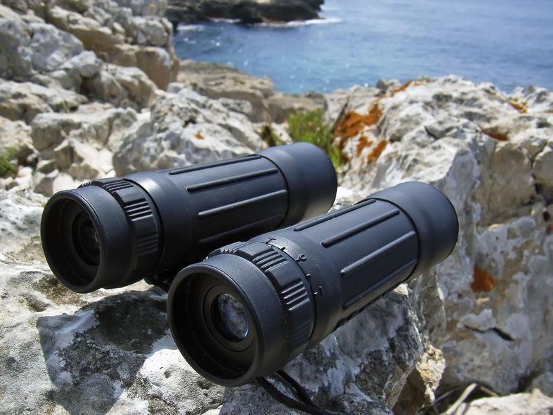 How to Focus Your Binoculars