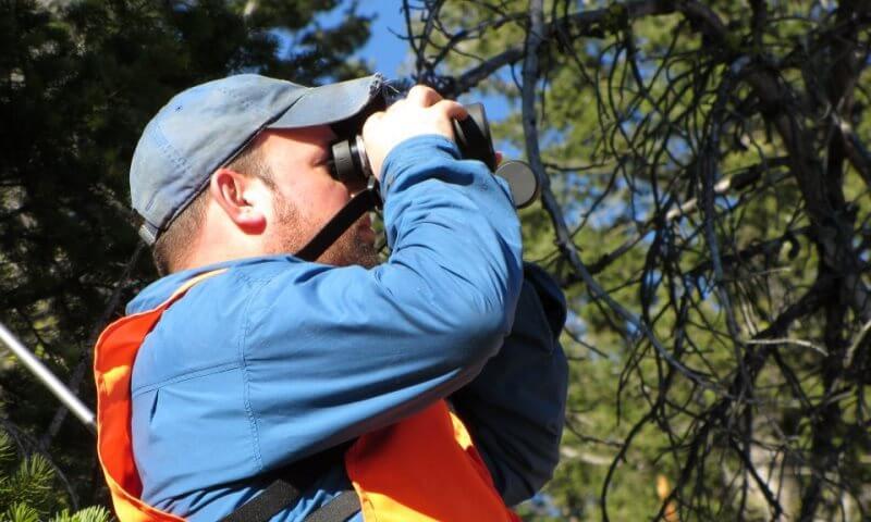 Top Hunting Binoculars 300-400