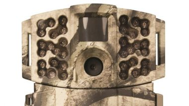 Best Trail Cameras - Reviews and Buyer Guide