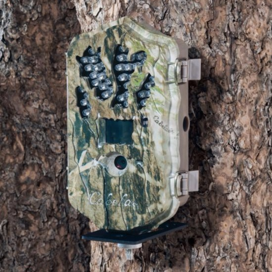 Gear Guide: Best Trail Camera Reviews for 2017 » Advanced Hunter