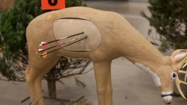 Best Archery Targets for Bowhunting