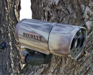 Reconyx Microfire MR5 Review