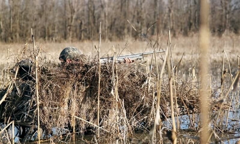 Layout Blind Reviews for Duck & Goose Hunting