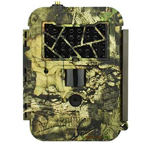 Best Cellular Trail Camera Buyer S Guide And Reviews In