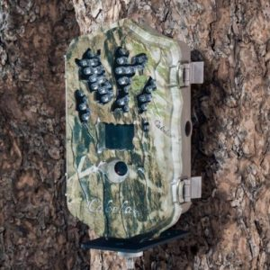 Cabela's Outfitter 14MP IR HD