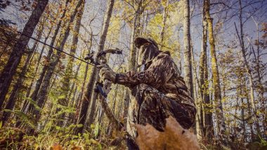 Ultimate Guide to Bowhunting