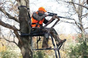 Tree Stand Advantages